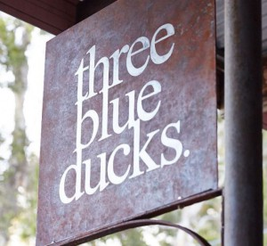 FD - Three Blue Ducks